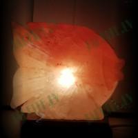 Himalaju sāls lampa Zivs 3-4 kg